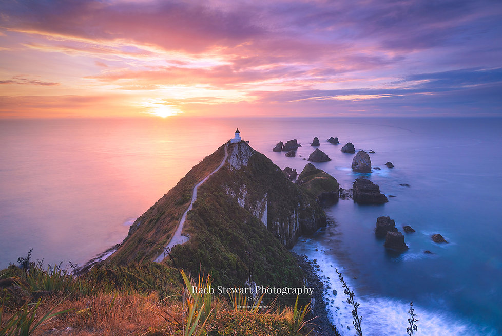 nugget-point-sunrise-catlins-4.jpg
