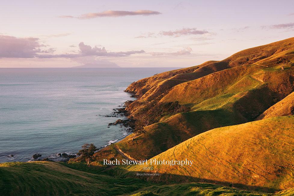 Coromandel Peninsula sunset