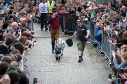 The Oxford & Cambridge Goat Race