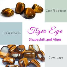 Tiger Eye-Shapeshift and Align
