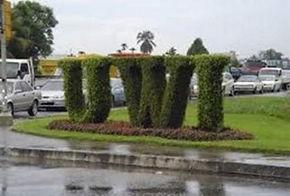 UWI Grass Pic.jpg