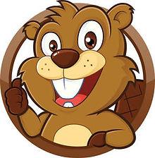 beaver-pic-to-use_2.jpg