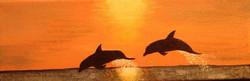 Sunset Swim.jpg.jpg