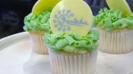 Signature Mini Cupcakes with Chocolate Curls & Edible Chocolate Logo