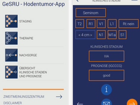 GeSRU Hodentumor App