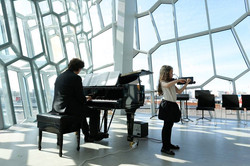 Violin Performance Harpa