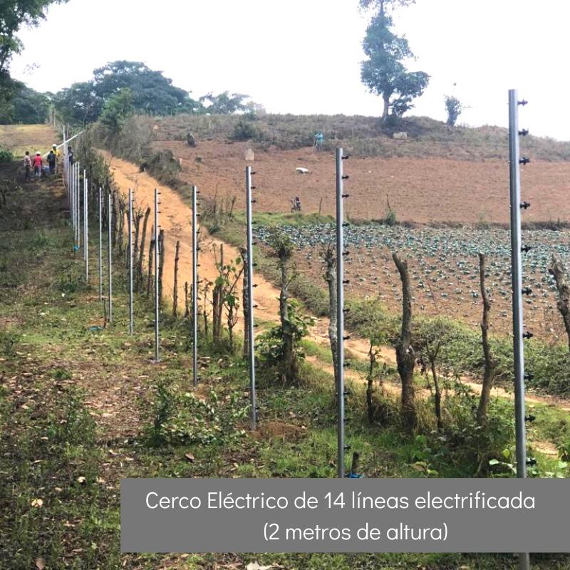 Cerco Eléctrico de 14 líneas electrificadas (2 mts)