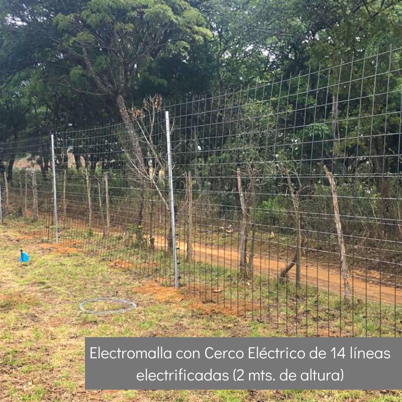 Electromalla con Cerco Eléctrico de 14 líneas electrificadas (2mts de altura)