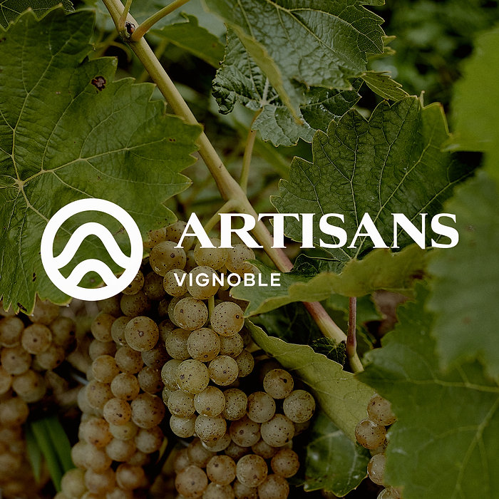 Raisins Vignoble_Strive_square_logo.jpg