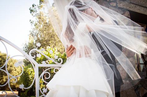 Kiss under the wedding veil