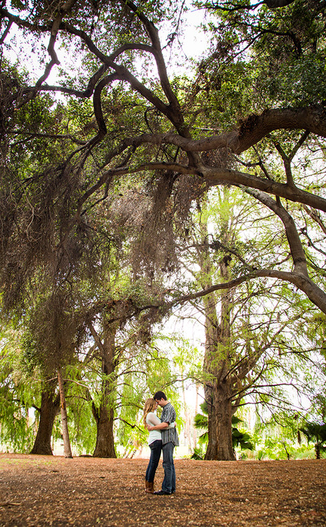 engagement under the trees