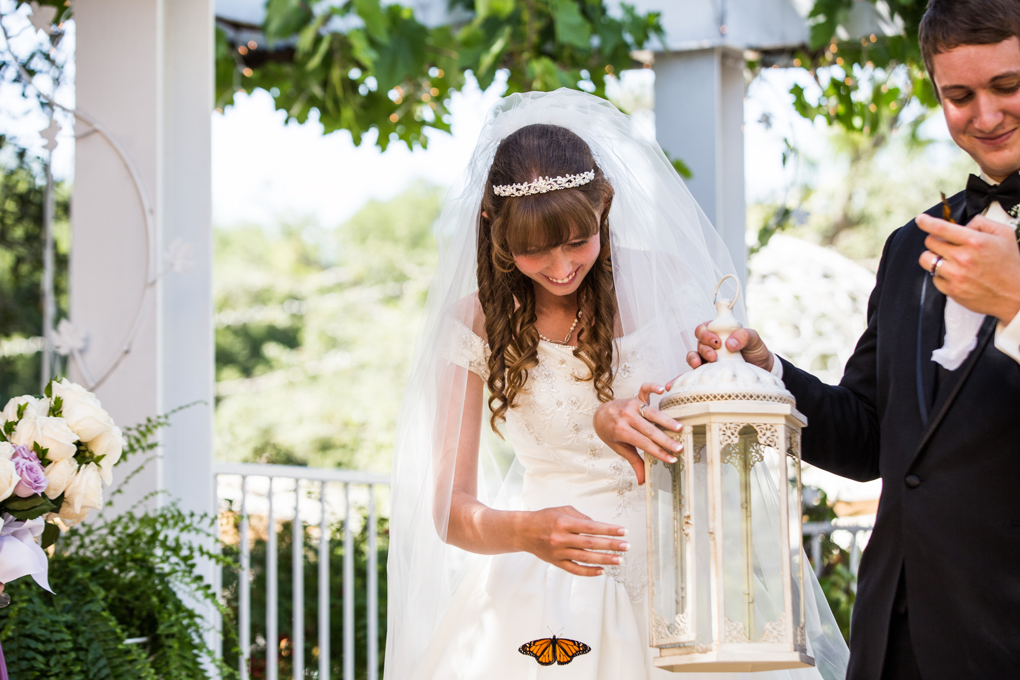 Butterfly release during ceremony