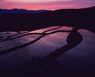 直虎が見た風景再生プロジェクト
