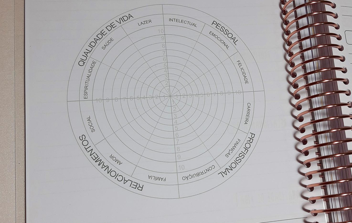 Roda da Vida