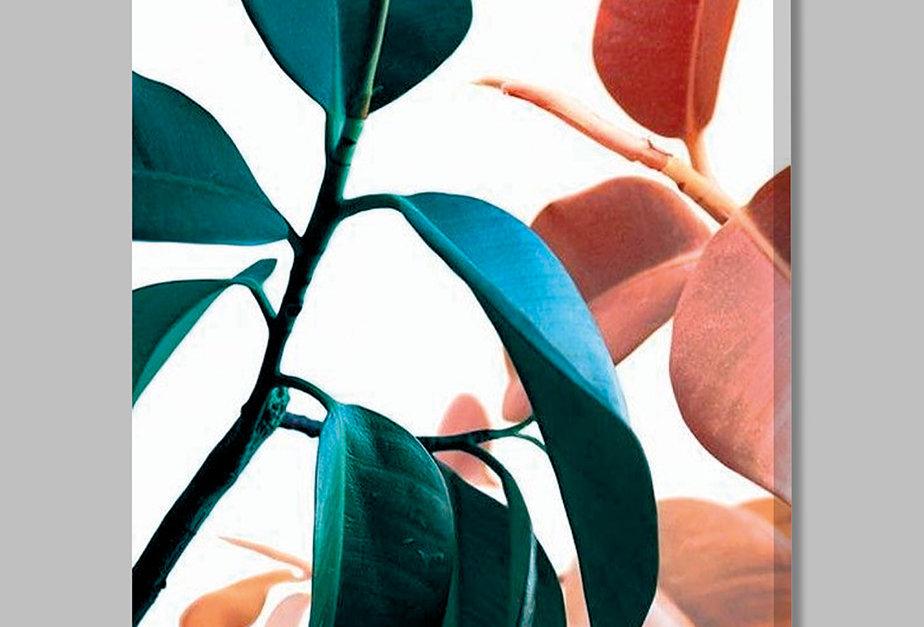 Placa Decorativa Personalizada Folhas Coloridas II