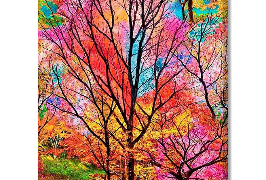 Placa Decorativa Personalizada Primavera Colorida