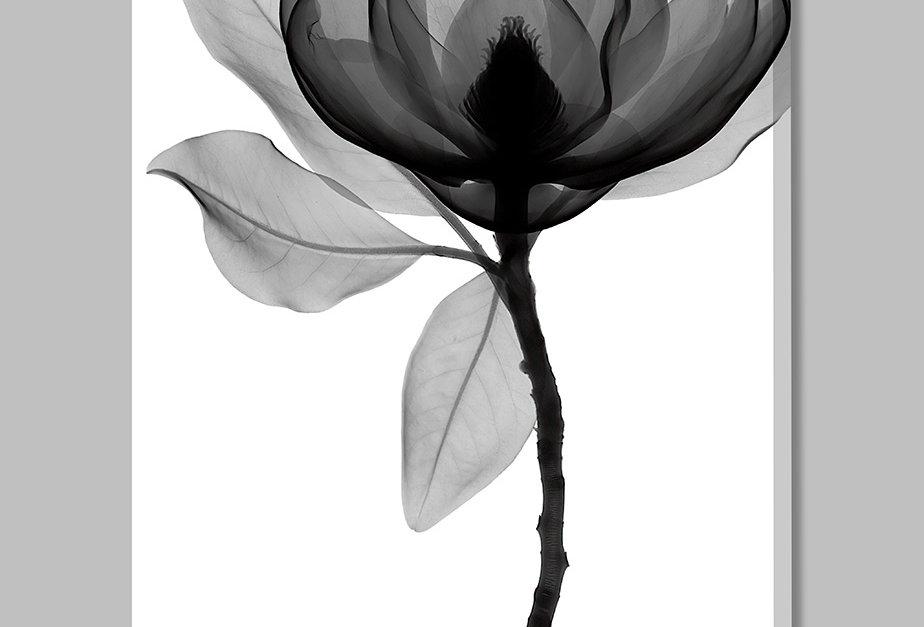 Placa Decorativa Personalizada D'Flora II