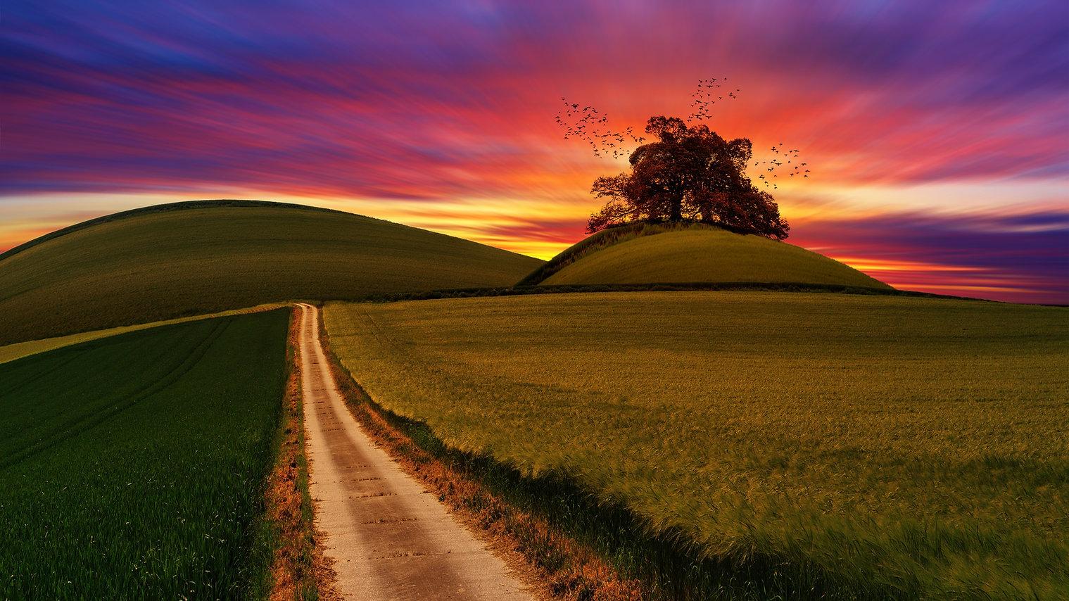 sunset_homepage_image_counttheomer.jpg