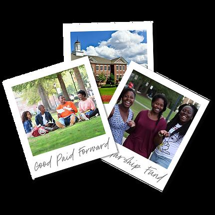 Scholarship Polaroids, transparent.png