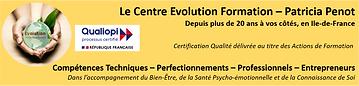 Bandeau-Evolution.png