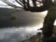 Loch Arkaig Diatom analysis