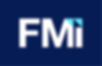 fmi consulting.png