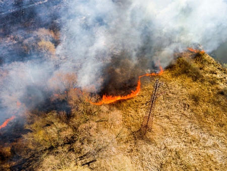 The Wildfire Epidemic: Solutions from Data, Tech, & Ancestral Knowledge