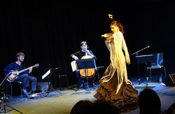 Projet Flamenco, l'Abri. 4.6.2016