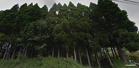 中松土地 後藤さん土地.jpg