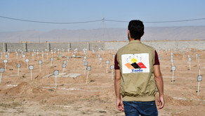 Statement: Yazda welcomes and supports the exhumation of the Mass Graves in Kocho, Solagh-Sinjar