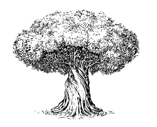 Website tree.png