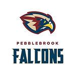 PB falcons logo.jpg