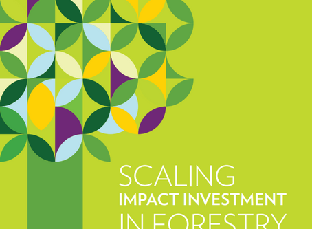 NZFFP contributes to most recent GIIN report on impact investing in forestry