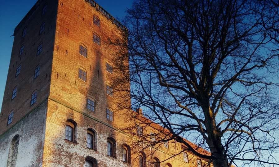 Kolding Kommune bruger giftfrie fælder   MyreExpressen