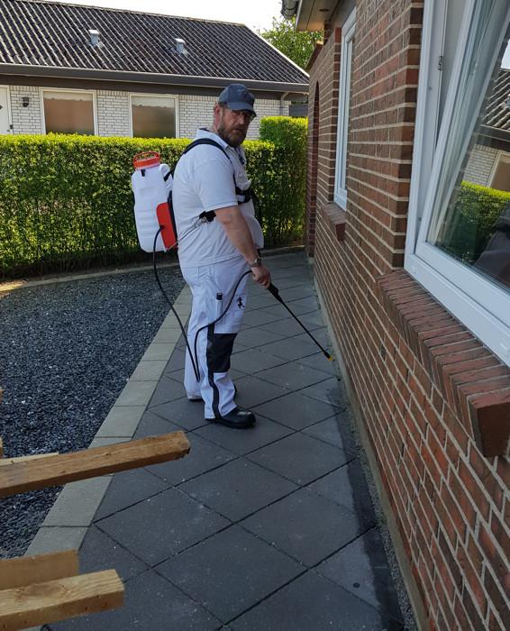 Myrebekæmpelse i Tønder: myresprøjtning langs soklen på huset