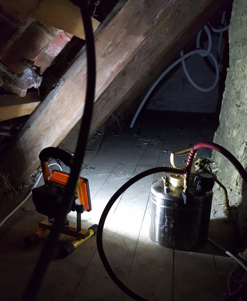 Borebillebekæmpelse på loftet
