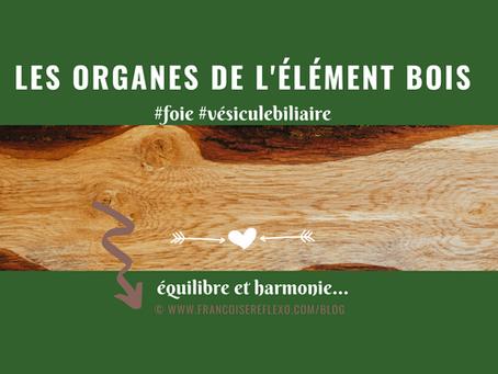 Les organes de l'élément BOIS : le Foie et la Vésicule Biliaire
