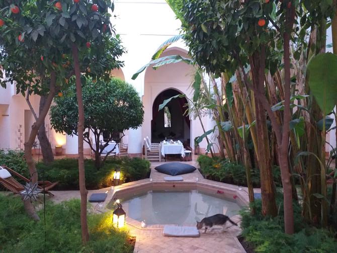 Maroc, Yoga, Rando et Restau