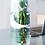 innovative grey goose vase