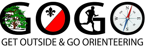 Summer GoGo Logo.png