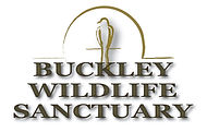Buckley Logo.jpg