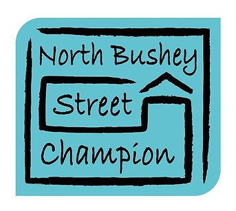 street champion initiative .JPG