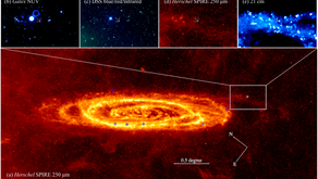 Discovery of a new Luminous Blue Variable in the outskirt of the Andromeda Galaxy