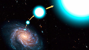 Discovery of two more runaway stars from the LAMOST Spectroscopic Surveys