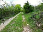 Chemin_Gd_Margès.jpg