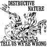destructive nature cover art.jpg