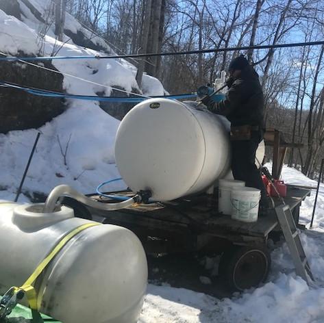 Home woods tank pickup.jpg
