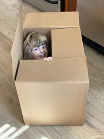 Theo in Box.jpg
