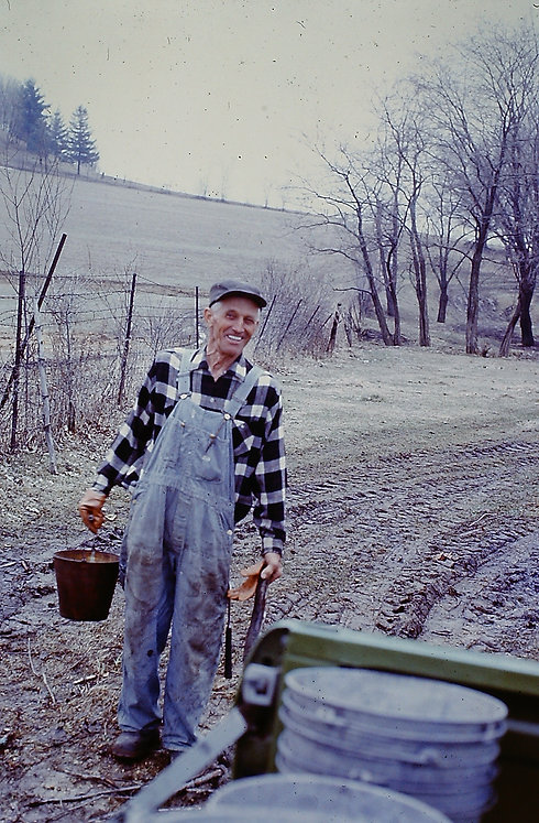 Grandpa with sap buckets.jpg