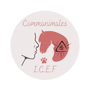 Commanimales I.C.E.F-8.png2.png